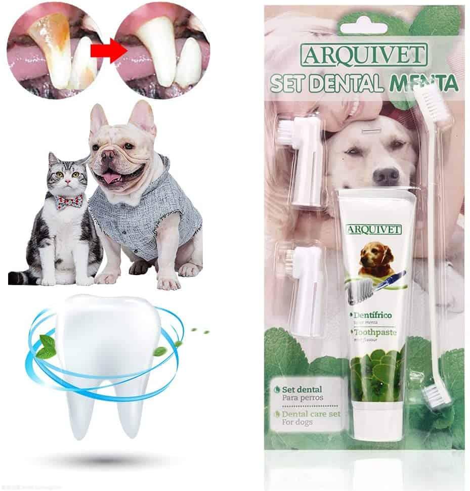 arquivet toothbrush