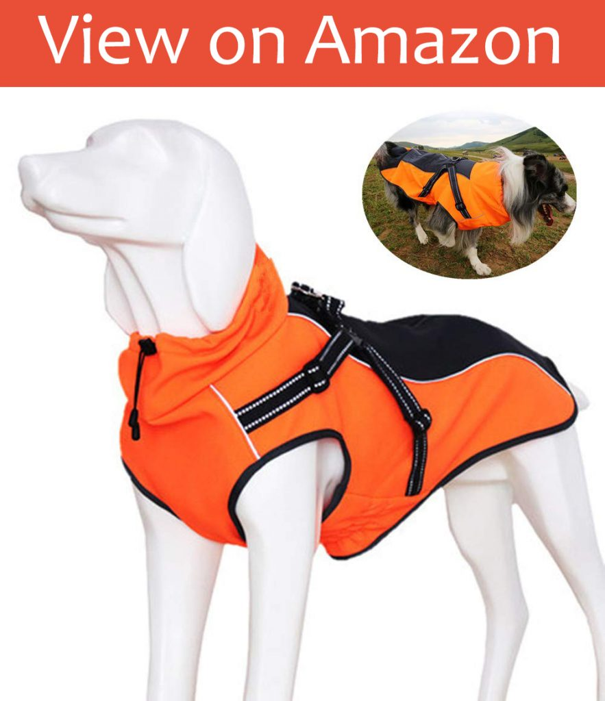 JunBo Dog Jacket