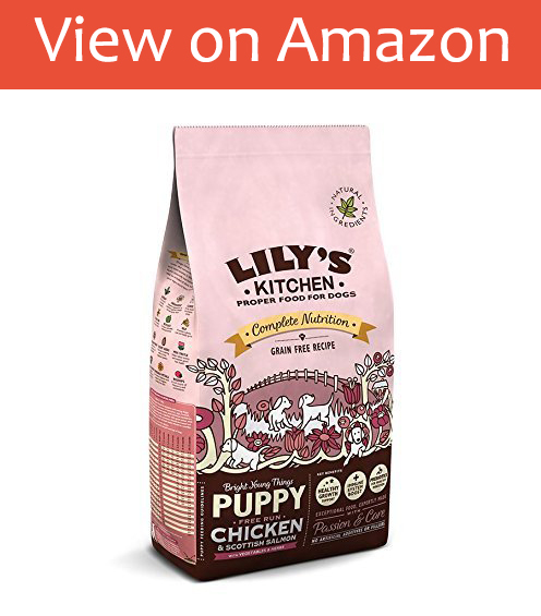 Lily's Kitchen dry Puppy Food