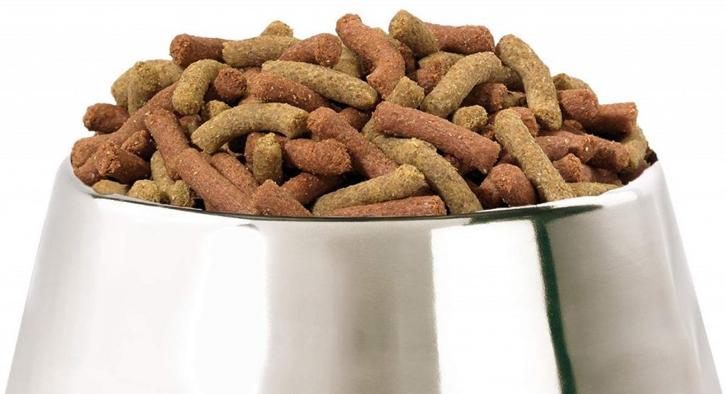 HiLife Dog Food Review