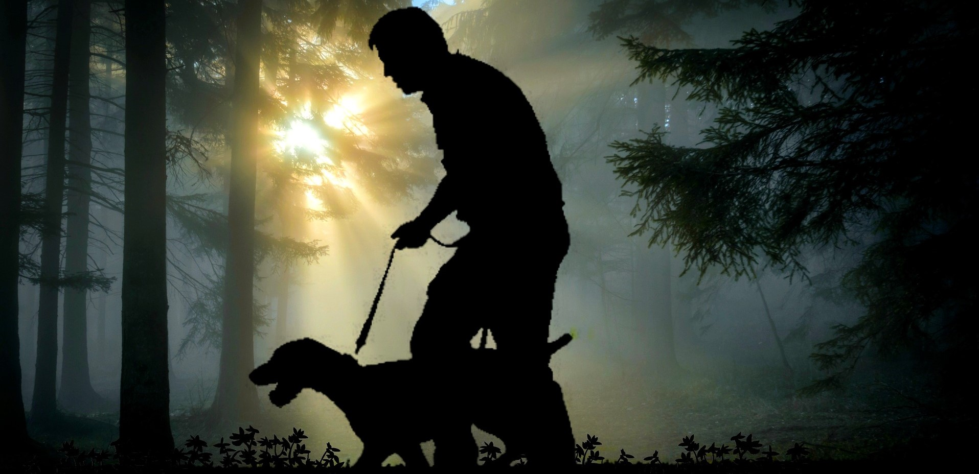 what's the Cost of a Dog Walker