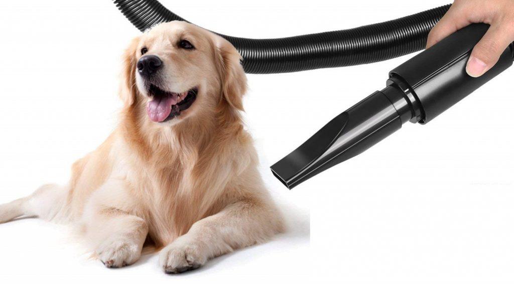 dog hair dryers