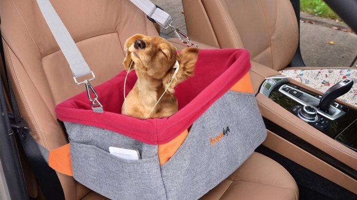 best dog car seat uk
