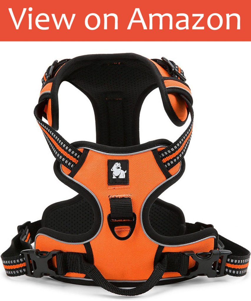 Fit Into Everyway No-Pull Dog Harness