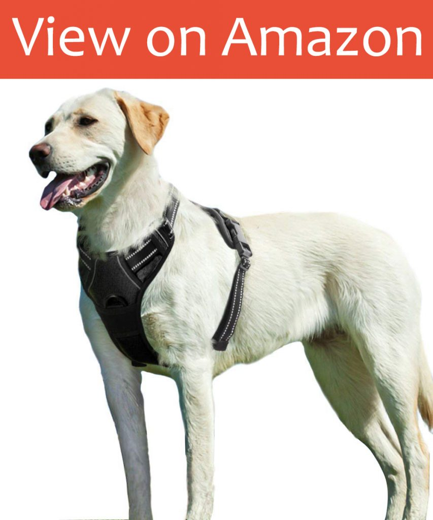 Eagoo No Pull Dog Harness