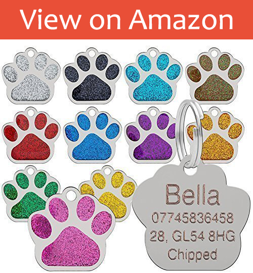 Personalized and Engraved Glitter ID dog tags