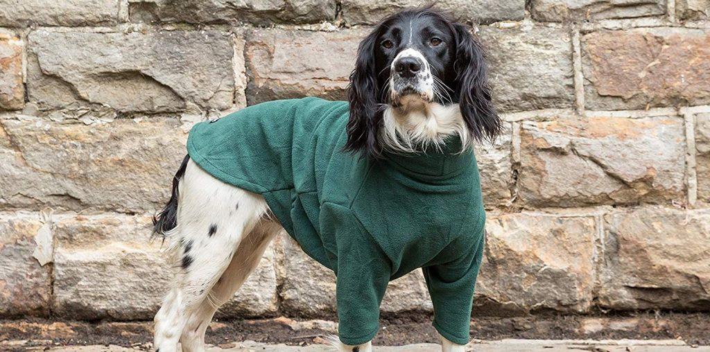 Equafleece Dog Suit Review