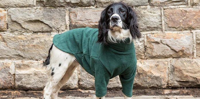 Equafleece Dog Suit Review