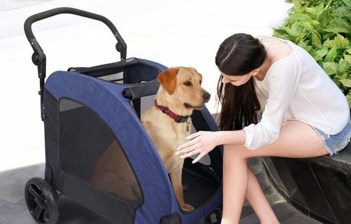 best dog pushchairs