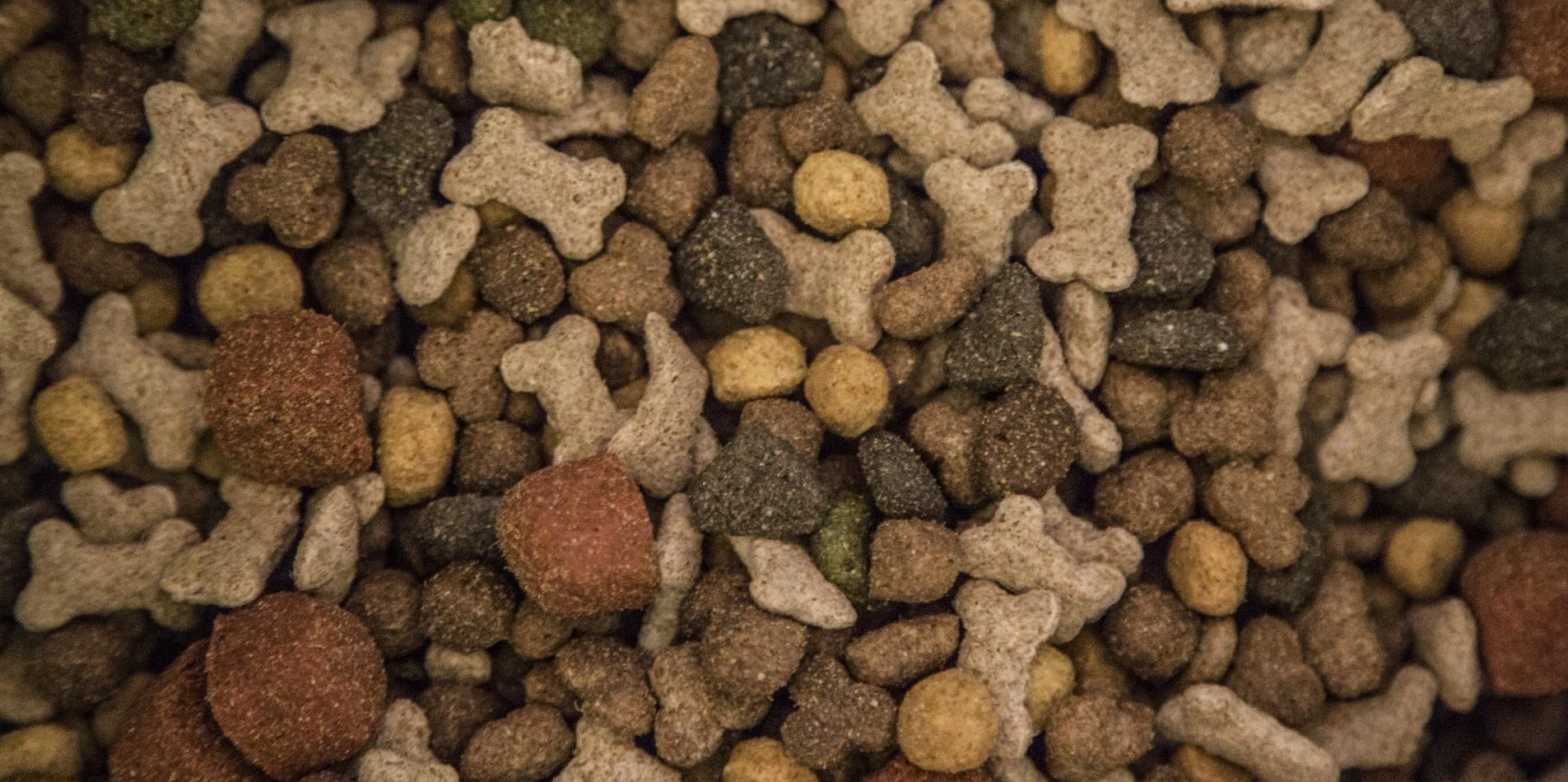 5 Best Dry Dog Foods For 2019 Uk Dog Desires