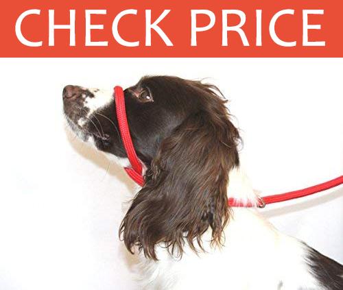 Dog & Field Figure 8 Halter Lead & Collar