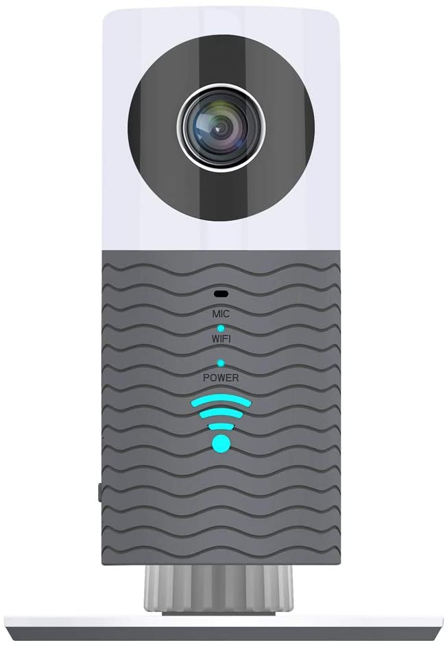 clever dog camera