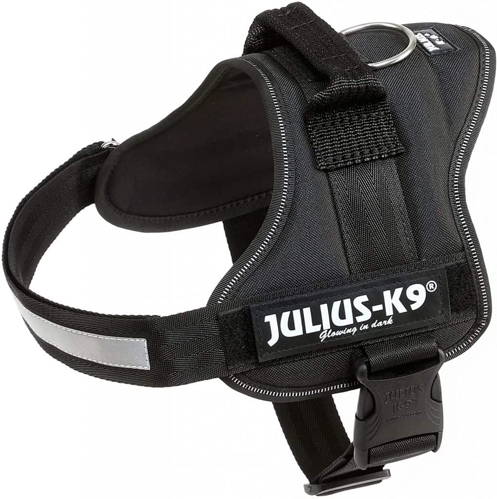 Julius K9 PowerHarness for Dogs