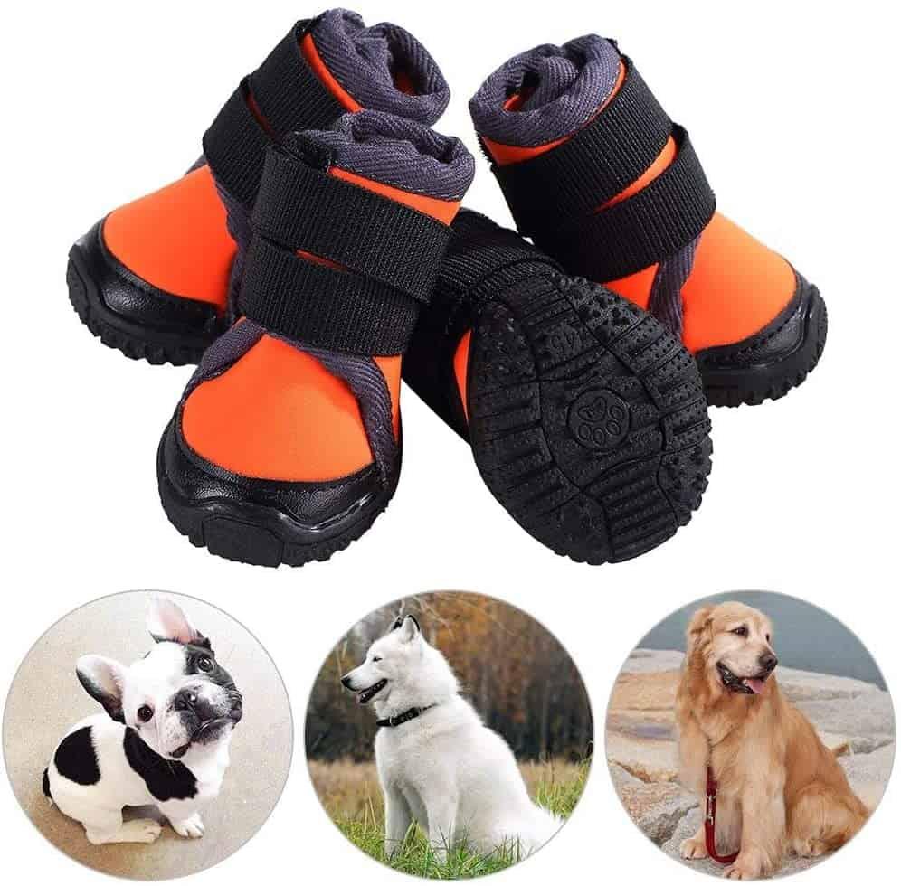 Petilleur Protector Dog Boots
