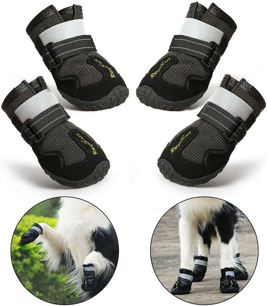 RoyalCare Dog Boots Paw Protector