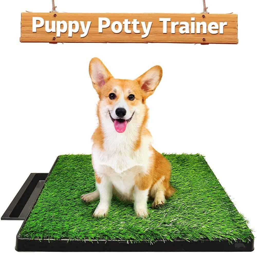 Hompet Dog Indoor Toilet Trainer