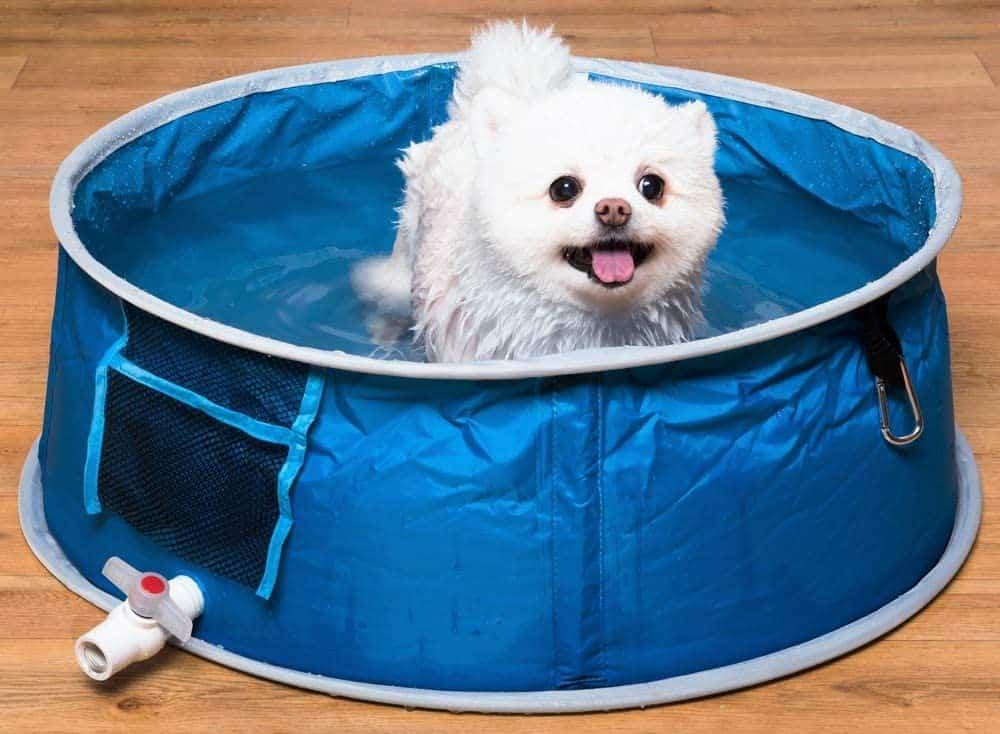 Coco Jojo Pop Up Pet Bath Dog Bath Dog Pool
