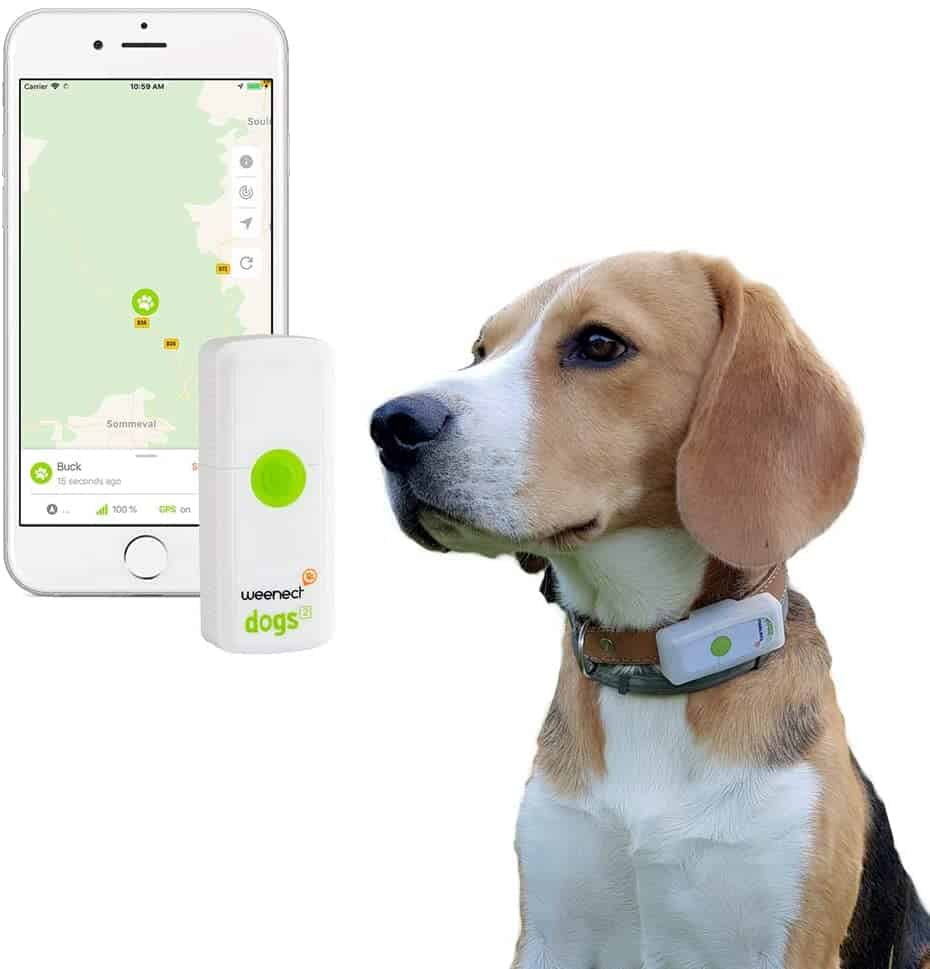 Weenect Dogs - The GPS tracker for Dogs