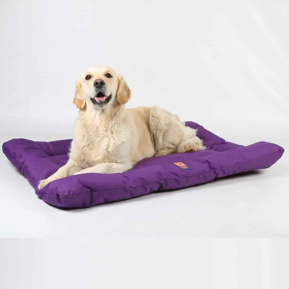 Ginger Ted Durable Waterproof Mattress Pet/Dog Bed
