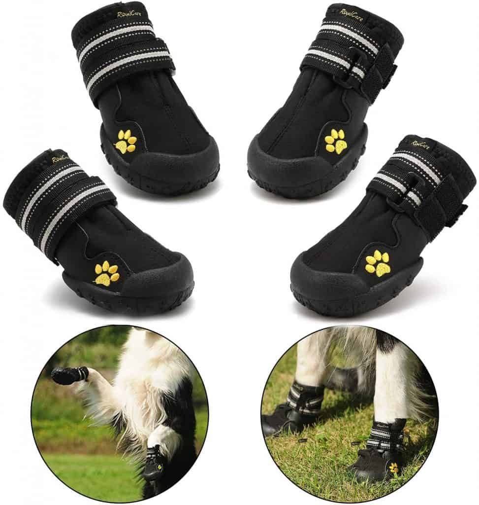 Royalcare Protective Dog Boots