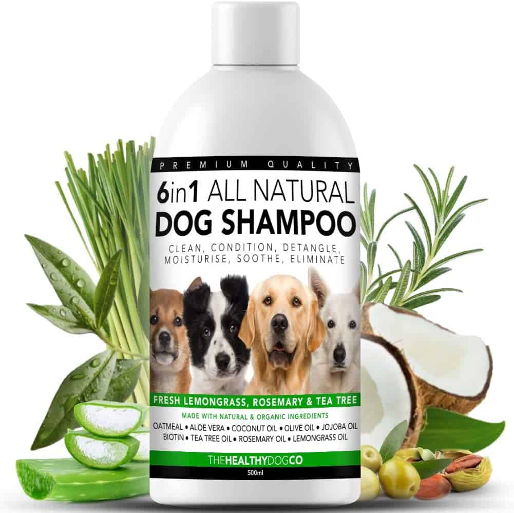 The Healthy Dog Co - 6 in 1 All Natural Dog Shampoo