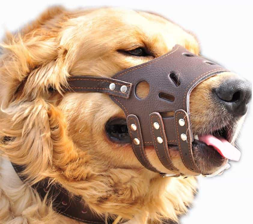 HiujingSport JeonbiuPet Adjustable Dog Muzzle