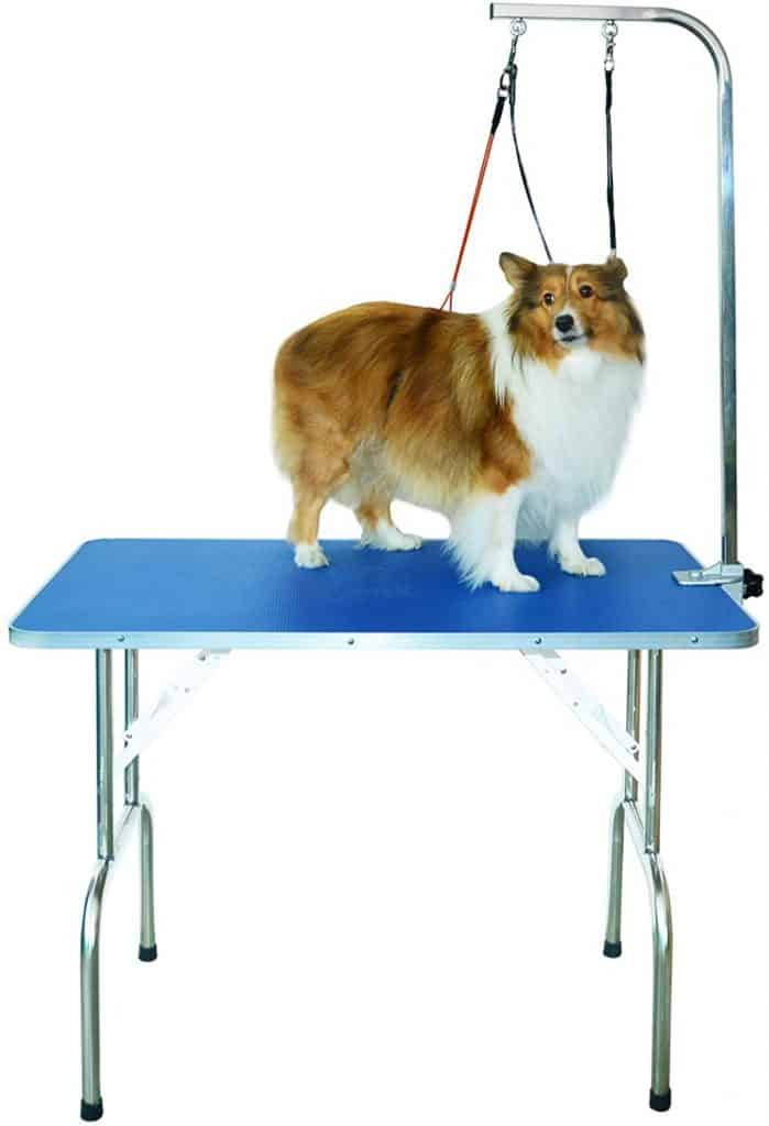 Gravitis Pet Supplies Professional Dog Grooming Table