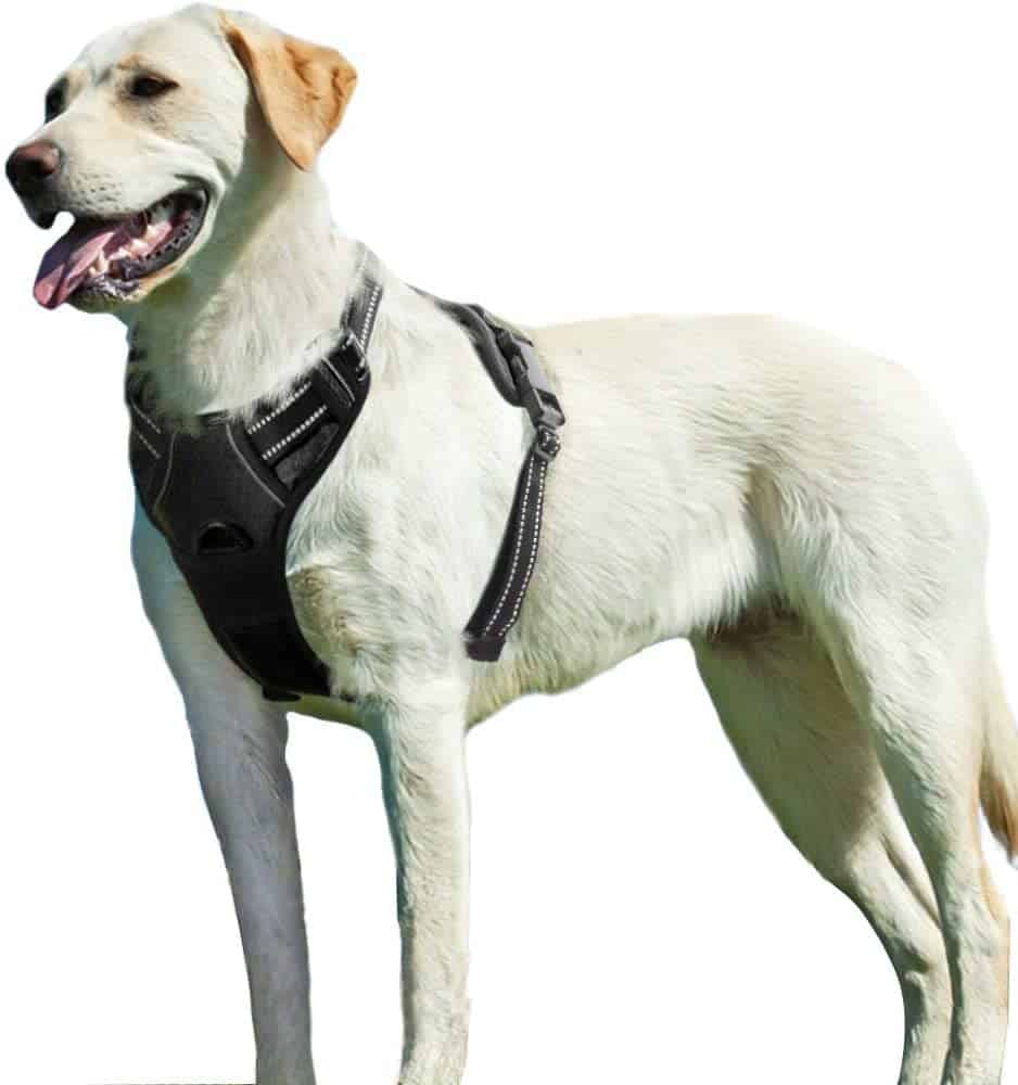 Eagoo No Pull Dog Harness