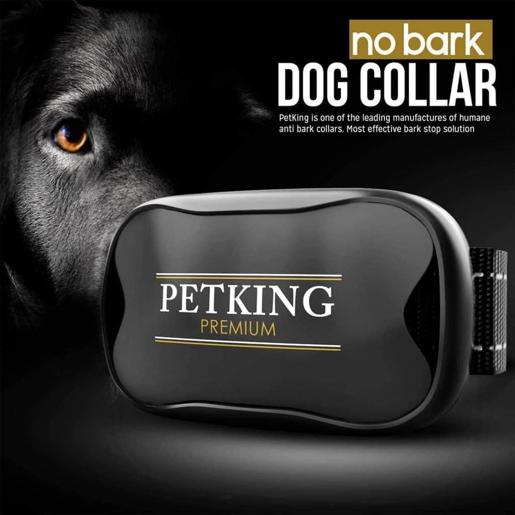 PetKing Premium No-Bark Dog Collar