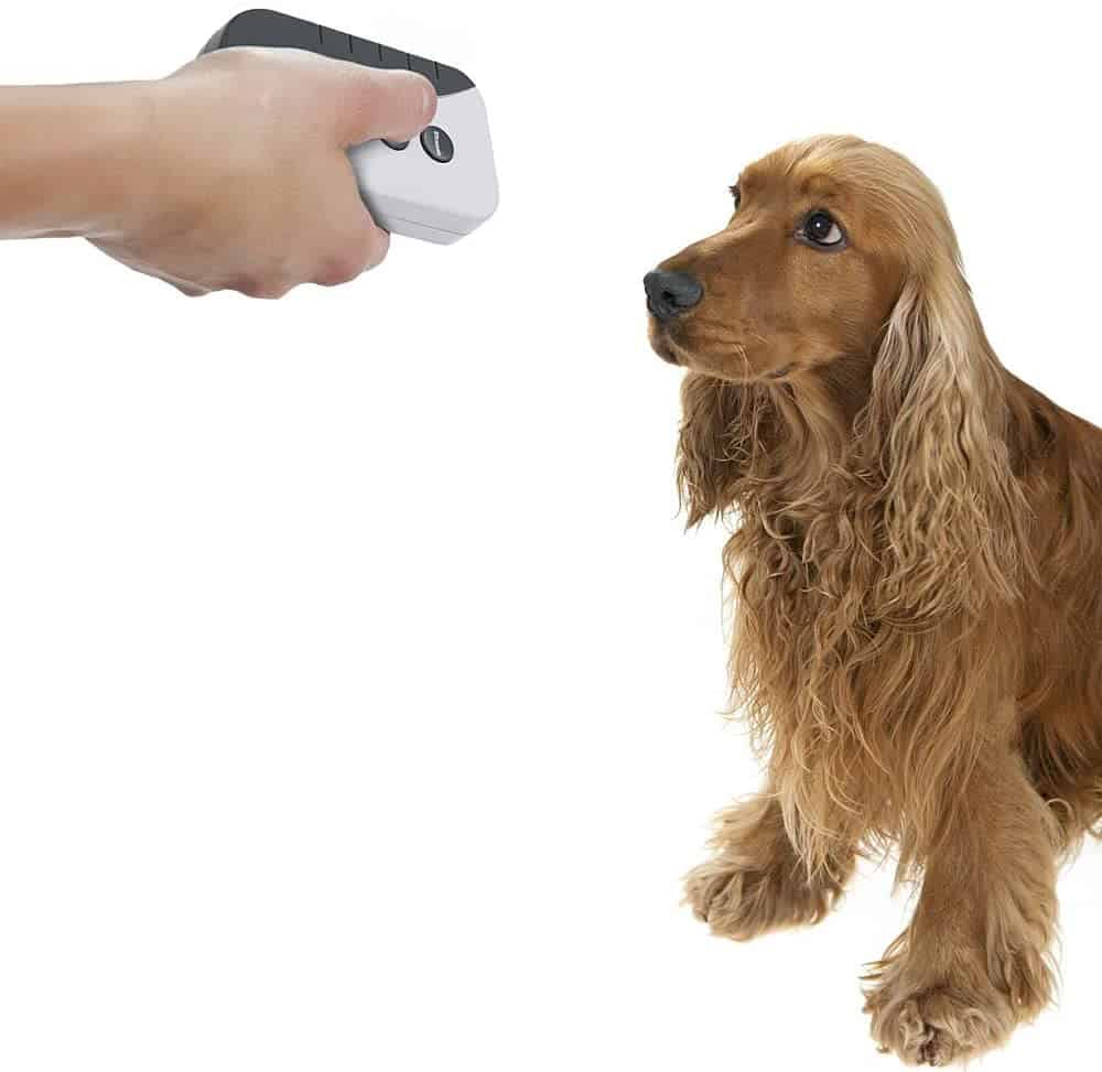 BarkStopper Ultrasonic and audible bark deterrent device