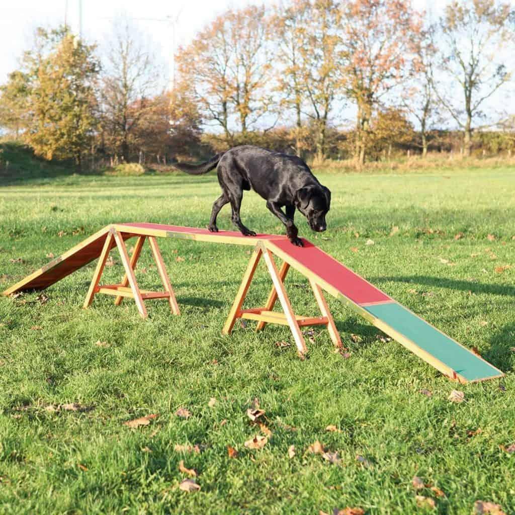 Trixie Dog Activity Agility Dog Walk